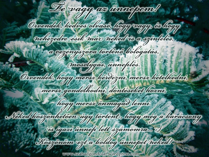 20121219_101014 copy