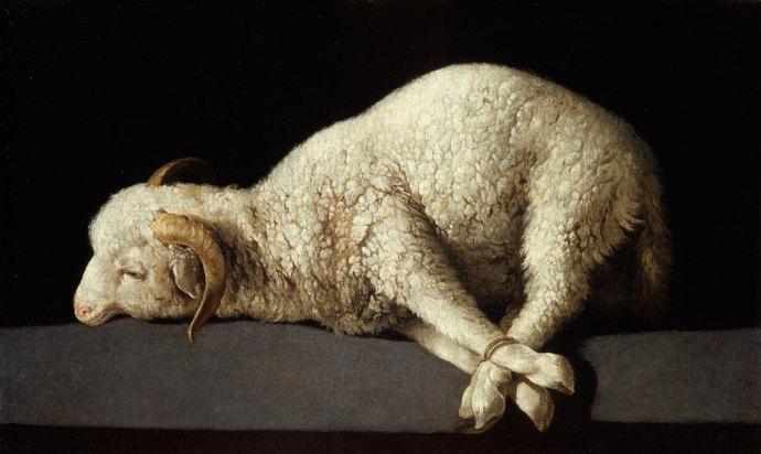 Francisco de Zurbarán's Agnus Dei - a still life of a trussed up lamb