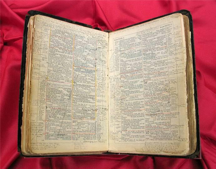 newberry.bible.1896.L